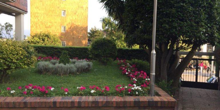 V50 jardin