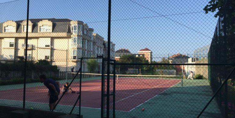 V50 tenis